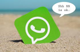برنامج ارسال رسائل واتس اب WhatsAPP Bulk Sender